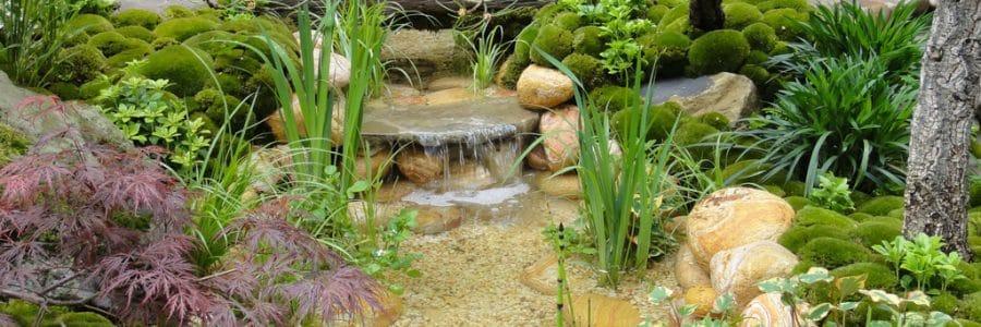 Bach im eigenen Garten anlegen